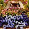 Capital Home & Garden Show