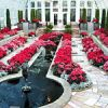 Holiday Flower Show in Minnesota