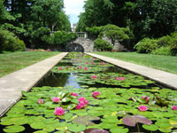 Azalea Garden at Skylands