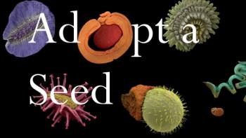 adoptaseed